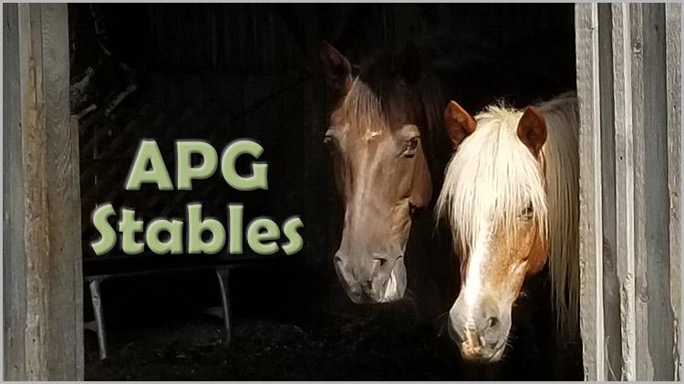 APG Stables